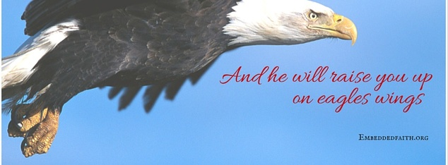 on eagles wings facebook cover on embeddedfaith.org