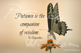 Patience is the companion of wisdom St. Augustine - saintly sayings