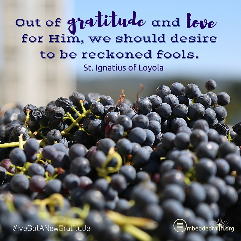 Out of gratitude and love for Him, we should desire to be reckoned fools. St. Igngatius. - #IveGotANewGratitude on embeddedfaith.org