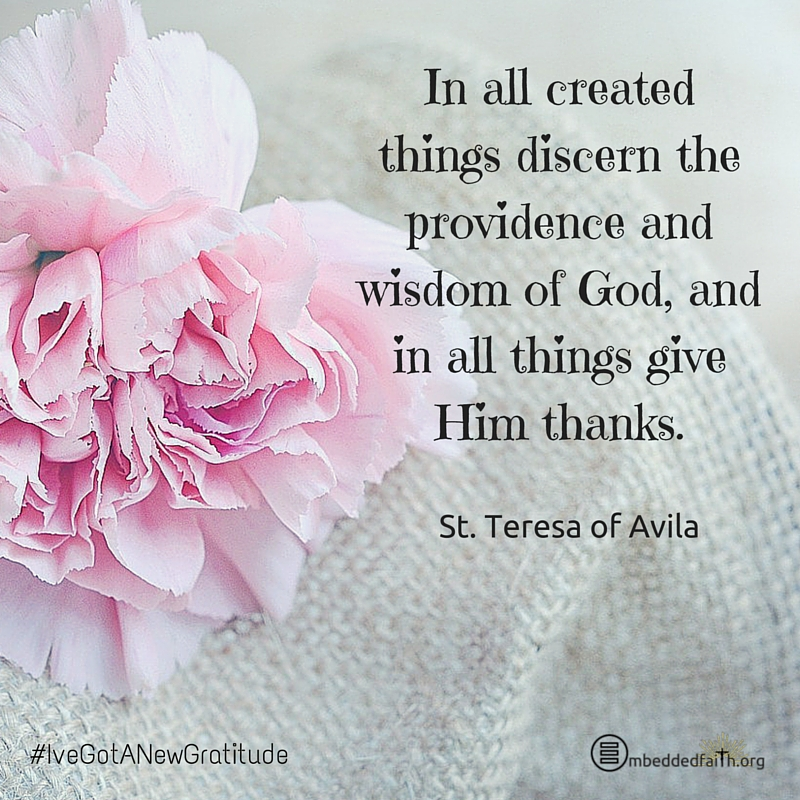 In all created things discern the providence and wisdom of God, and in all things give Him thanks. - St. Teresa of Avila - #IveGotANewGratitude on embeddedfaith.org