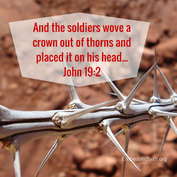 Holy Week/Good Friday - and the soldiers wove a crown out of thorns... John 19:2