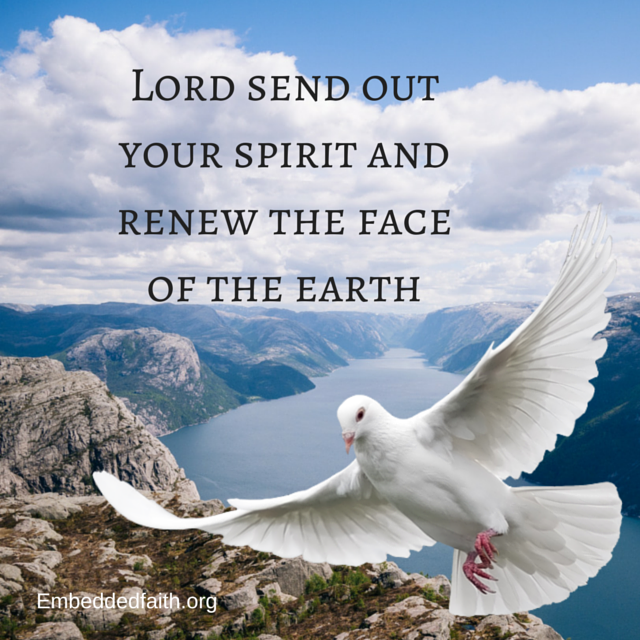 Lord send out your spirit and renew the face of the earth. embeddedfaith.org
