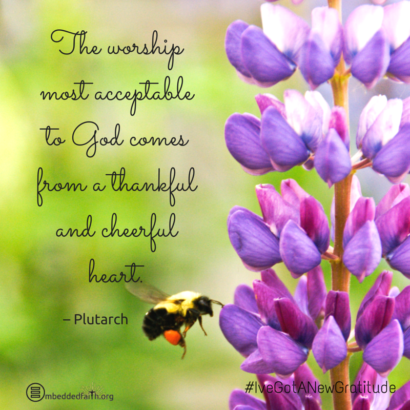 The worship most acceptable to God comes from a thankful and cheerful heart. - Plutarch - #IveGotANewGratitude - 13 quotes on gratefulness at embeddedfaith.org