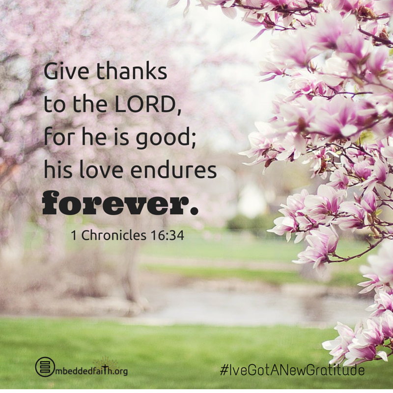 Give thanks to the Lord, for he is good; his love endures forever. 1 Chronicles 16:34 - #IveGotANewGratitude - 13 quotes on gratefulness at embeddedfaith.org