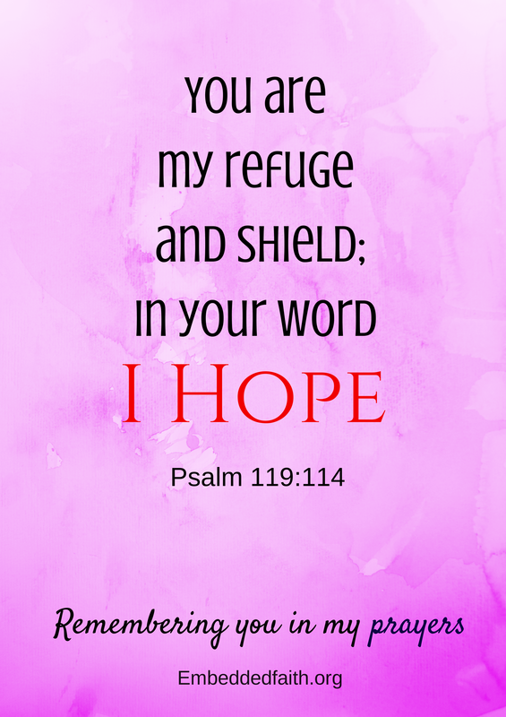 You are my refuge and shield - Psalm 119:114 - Remembering you in my prayers - embeddedfaith.org