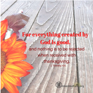 For everything created by God is good and nothing is to be rejected when received with thanksgiving. - 1 Timothy 4:4