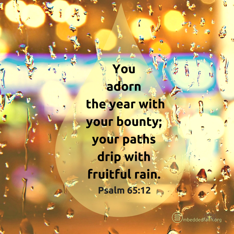 You adorn the year with your bounty: your paths drip with fruitful rain - Psalm 65:`12 - embeddedfaith.org