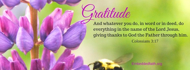 Gratitude Facebook Cover Series - Whatever you do.Give thanks to God. embeddedfaith.org
