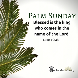 Palm Sunday - Blessed is the king who comes in the name of the Lord. Luke 19:38