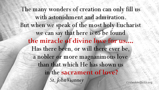 The many wonders of creation can only lfill us with astonishment and admiration...st john vianney - saintly sayings