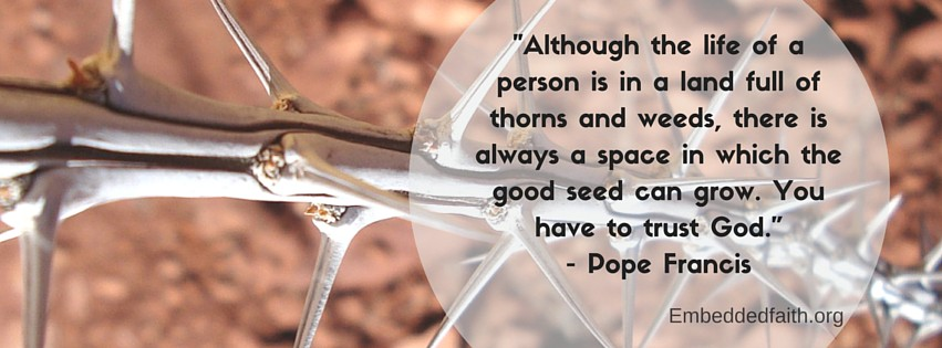 Pope Francis facebook cover - Althought life is in a land full or thorn and weeds, there is always a space in which the good seed can grow. you have to trust God. embeddedfaith.org