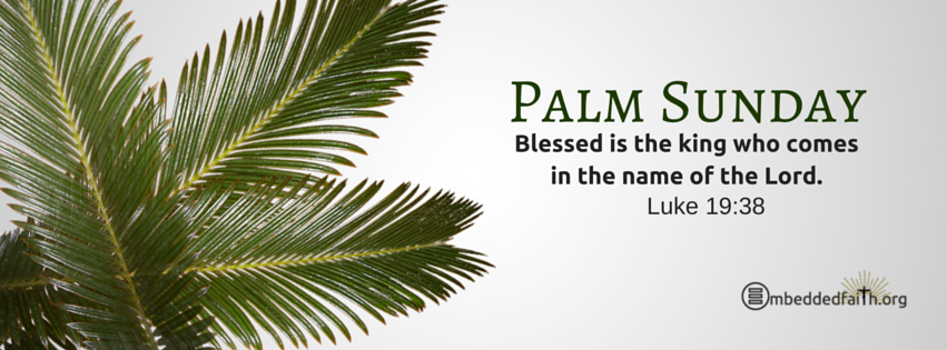 Palm Sunday Facebook Cover -  Blessed is the king who comes in the name of the Lord. - Luke 19:38